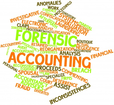 The Role Of A Forensic Accountant In Litigation Ara Fraud Forensic Services